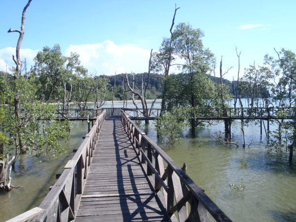 Taman Negara Bako